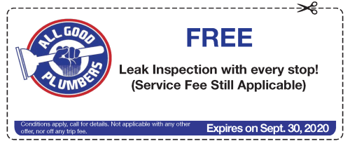 Coupon Free Leak Inspection